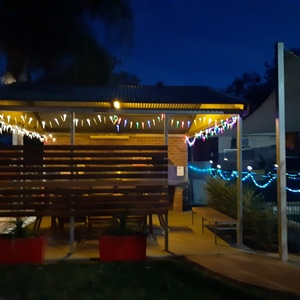Pool Christmas Lights BBQ Area (2)